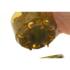 Kép 2/3 - Korda Infuza (Size S) - dippelő tégely small