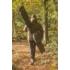 Kép 3/3 - Solar Tackle Undercover Camo 3 Rod Holdall 13ft - botzsák